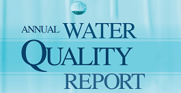 Image result for water quality report